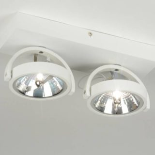 Ceiling lamp 2x ar111 matt white