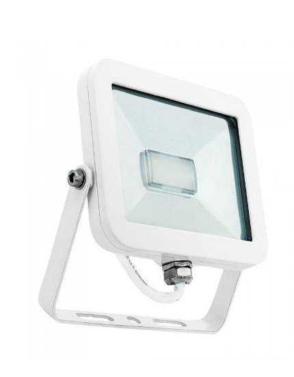 Projecteur LED 50W blanc froid 4000k