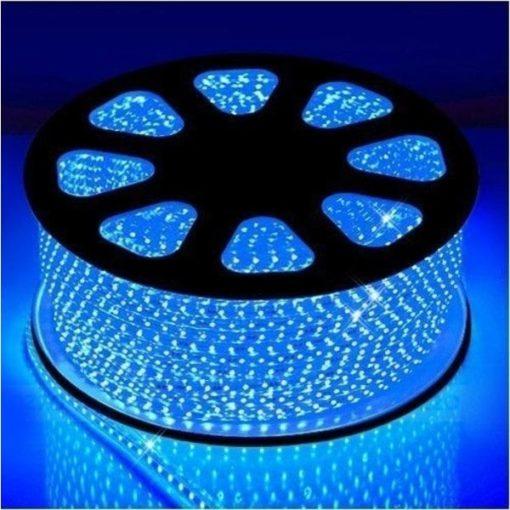 Ruban LED 220v / 230v sur rouleau de 50m IP65 | Bleu 1